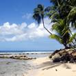 ...отпуска на солнечном острове Барбадос в Карибском море.